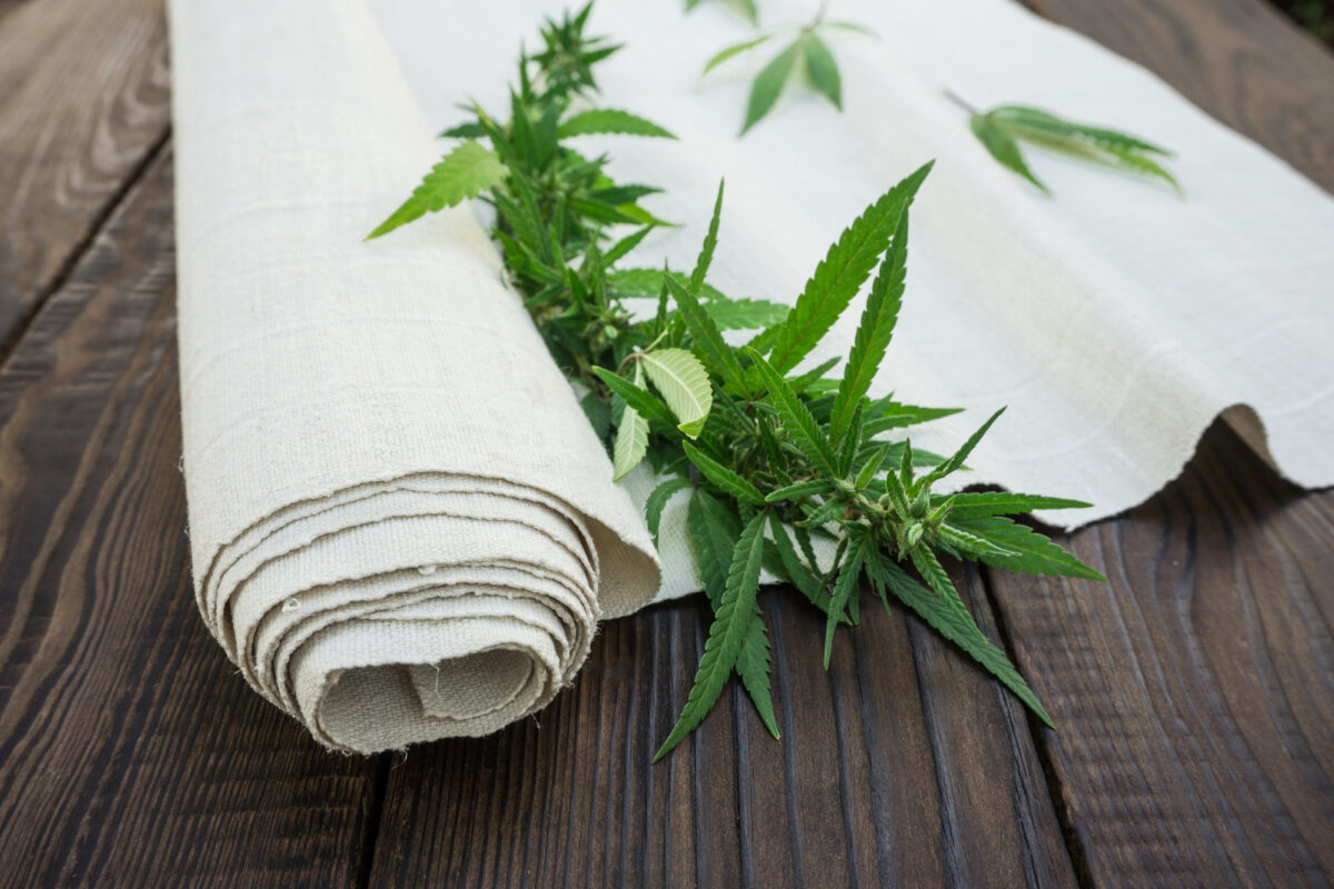 A Complete Guide to the Hemp Flower